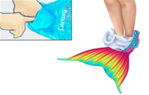 How to wear Mermaid Tail