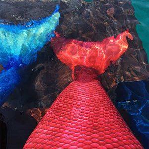 frenzy-mermaids-caribbean-tail